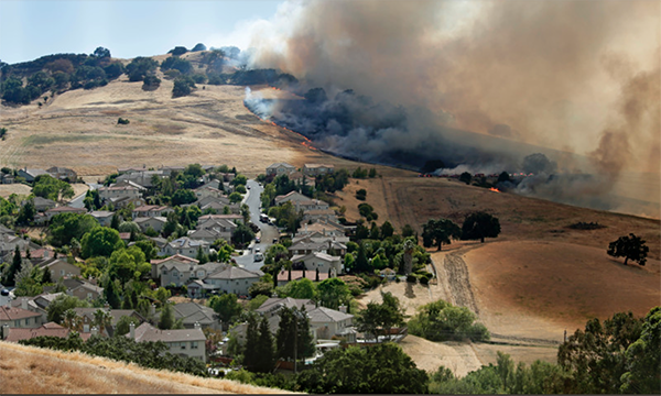 Home Inventory – Fire Season | Uniquely Yours Digital Solutions