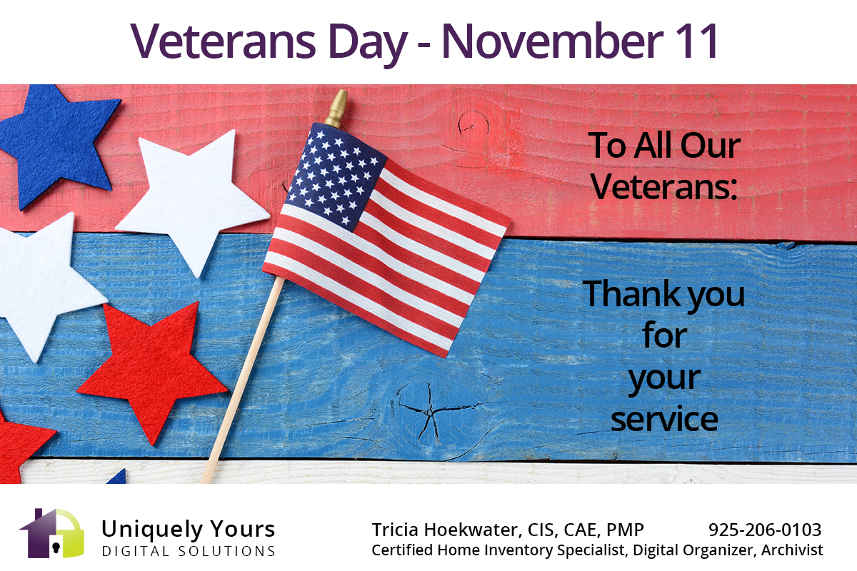 Veterans Day Flag and Message